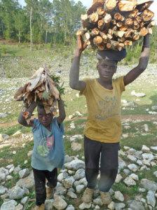 Foto: Holz auf dem Kopf tragen