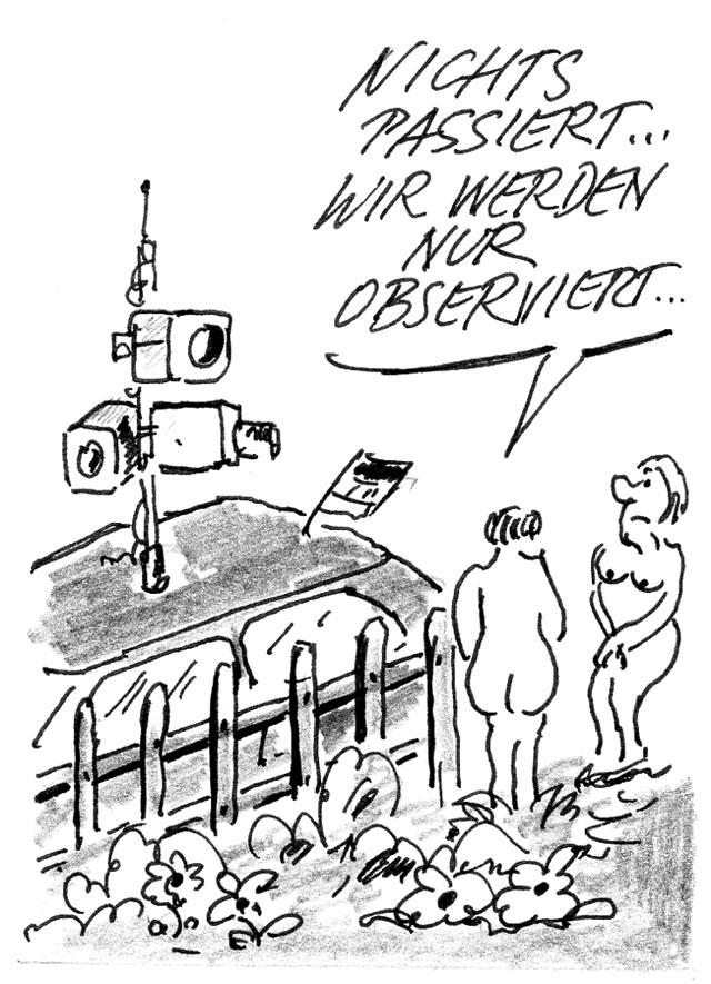 Google Street view Cartoon Pfeffer