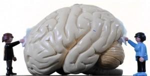 Gehirnwäsche Titel OHA