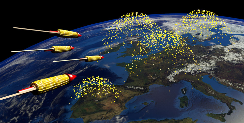 Bild: Genmaissilvesterraketen fliegen auf Europa zu